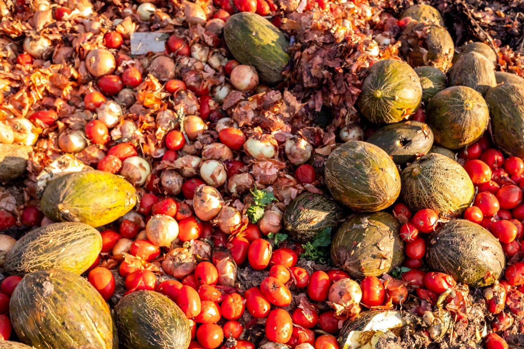 sprechi alimentari food waste