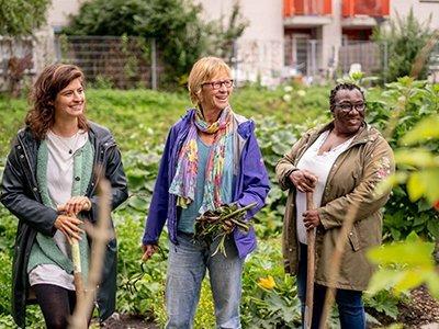 proyectos sociales Amsterdam